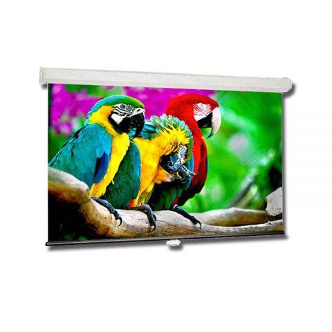 Draper Luma 16:9 HDTV Format Wall Screen