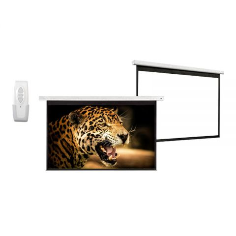 "Venova Motorized Projection Screen 60"" x 60"""